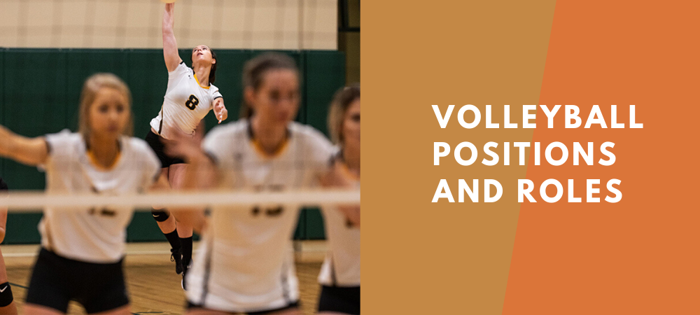 volleyball positions and roles